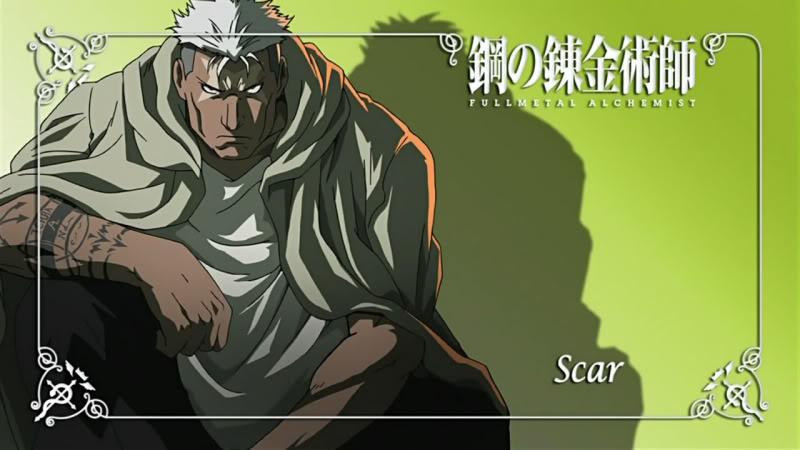 4055287-scar